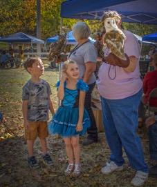 October 22 – Bridgeport Fall Festival